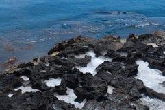 Pölen av havsvatten och vaggar. Fotografering för Bildbyråer