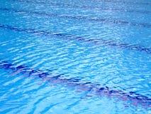 pölen görar randig simning arkivfoto