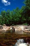 Pölen på tjurfilialen tömmer över en liten vattenfall arkivbilder