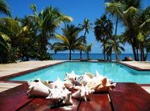 pölsemesterort som simmar tropisk sikt Royaltyfri Bild