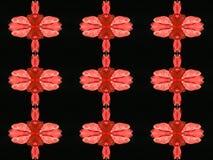 Pösiga kronblad Arkivbild