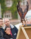 Público que presta atenção a um falcão a Foto de Stock