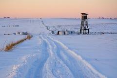 Púlpito a caçar para o campo do inverno Foto de Stock Royalty Free