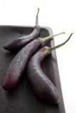 Púrpura china de la berenjena Fotografía de archivo libre de regalías