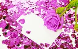 Púrpura color de rosa y tarjeta Fotos de archivo libres de regalías