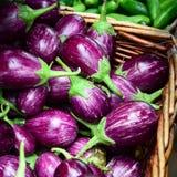 Púrpura de la berenjena Foto de archivo libre de regalías