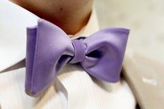 Púrpura elegante la corbata de lazo Fotos de archivo libres de regalías