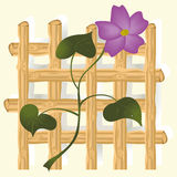 Púrpura-flor stock de ilustración