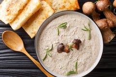 Pürieren Sie Suppe mit frischen porcini Pilzen und Thymiannahaufnahme in einer Schüssel, die mit horizontaler Draufsicht des Toas stockbild