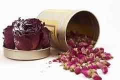 Pączki róże dla trawy herbaty w round słoju Zdjęcia Stock