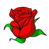 pączkowa czerwona róża Zdjęcie Stock