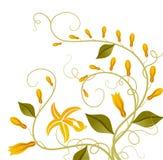 pączkowy kwiat royalty ilustracja