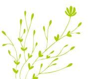 pączkowy kwiatu zieleni wzór ilustracja wektor