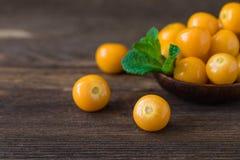 Pęcherzyc jagody z nowym liściem na drewnianym tle Obraz Stock