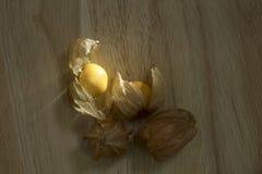 Pęcherzycy owoc lub przylądków agresty owocowi na natury tle Zdjęcia Stock