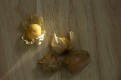 Pęcherzycy owoc lub przylądków agresty owocowi na natury tle Obraz Royalty Free