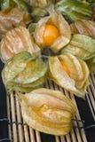 Pęcherzycy owoc & x28; Pęcherzycy peruviana& x29; także nazwany przylądka agrest, Zdjęcia Stock