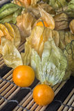Pęcherzycy owoc & x28; Pęcherzycy peruviana& x29; także nazwany przylądka agrest, Obrazy Stock