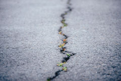 Pękający na drodze Zdjęcia Stock