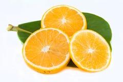pępek pomarańcze Fotografia Stock