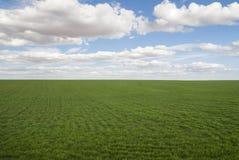 Płaska łąka przy Toledo Hiszpania Obrazy Stock