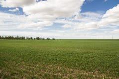 Płaska łąka przy Toledo Hiszpania Fotografia Stock