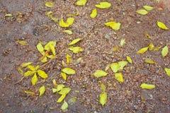 Płaska powierzchnia textured piaska tło Obrazy Royalty Free