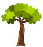 płaski drzewo Zdjęcie Royalty Free