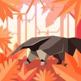 Płaski geometryczny dżungli tło z Anteater Zdjęcie Royalty Free