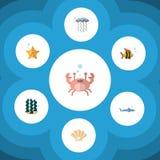 Płaski ikony Denny Ustawiający alga, owoce morza, nowotwór I Inni Wektorowi przedmioty, Także Zawiera nowotwór, krab, Rybi elemen Fotografia Stock