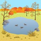 Płaski jesień krajobraz, jezioro z kaczkami, wektorowa ilustracja Zdjęcie Stock
