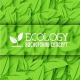 Płaski projekt ekologia, środowisko, zielony czyści Zdjęcie Stock