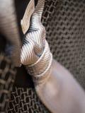 Płaski szczegół męski krawat fotografia royalty free