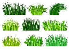 Płaski wektorowy ustawiający różna dekoracyjna trawa graniczy Jaskrawy - zielony dziki ziele Natury i botaniki temat naturalny royalty ilustracja