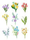 Płaski wektorowy ustawiający wiosna bukiety piękne kwiaty Ogrodowe rośliny Natury i botaniki temat ilustracji