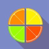 Płaskie graficzne cytrus owoc ilustracji