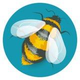 Płaskiej kreskówki pszczoły wektorowy bumblebee Fotografia Stock