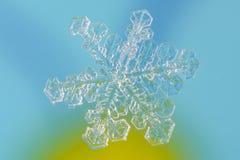 Płatek śniegu Obrazy Stock