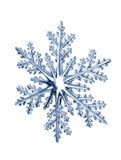 płatek śniegu zdjęcia stock
