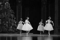 Płatek śniegu czarodziejka - Baletniczy dziadek do orzechów Obraz Stock