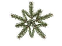 płatek śniegu gałęziasta świerczyna Zdjęcia Royalty Free