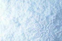 Płatek śniegu na śniegu zdjęcie stock