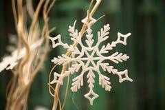 Płatek śniegu na beżowych gałąź Zdjęcia Royalty Free