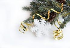 płatek śniegu wakacyjna zima Zdjęcia Royalty Free
