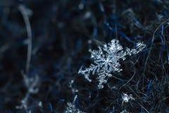 Płatek śniegu zbliżenia naturalny makro- strzał zdjęcia stock