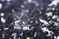 Płatek śniegu zbliżenia naturalny makro- strzał fotografia stock