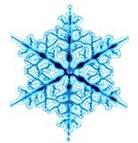 płatka śnieg ilustracja wektor