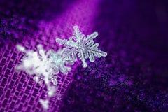 Płatka śniegu biały openwork piękny makro- zdjęcia royalty free