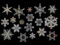 Płatka śniegu kryształ Zdjęcia Stock