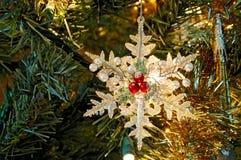Płatka śniegu Ornament   obraz stock